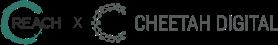 reach cheetah logo